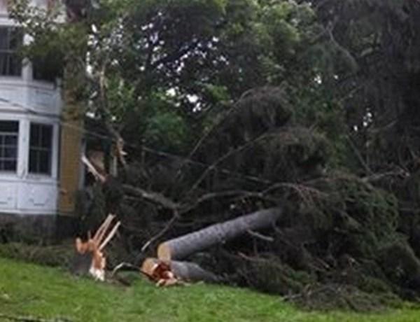 7.9.14 Lansing Storm Damage_-9065618184034893379
