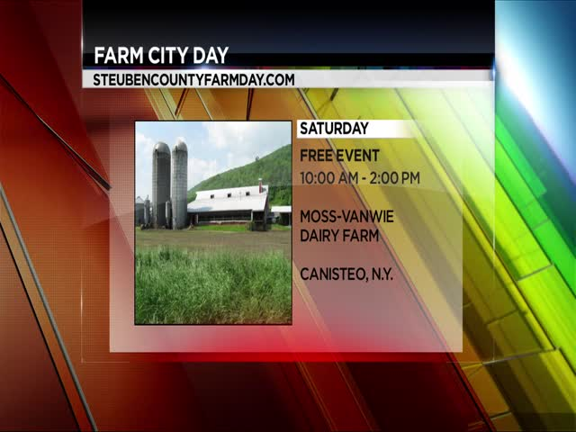 FARM CITY DAY LIVE_20150923113709