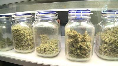 Medical-marijuana-jpg_20151001132613-159532