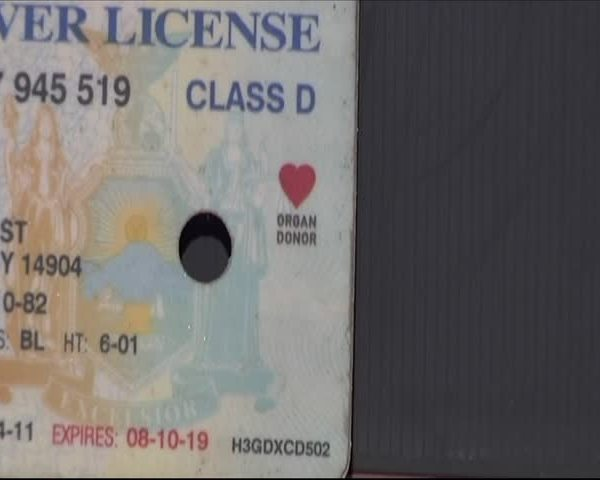 New Organ Donor Law In New York State_20151108015102