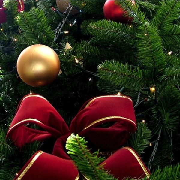 CHRISTMAS TREE 2_1449059892497.jpg