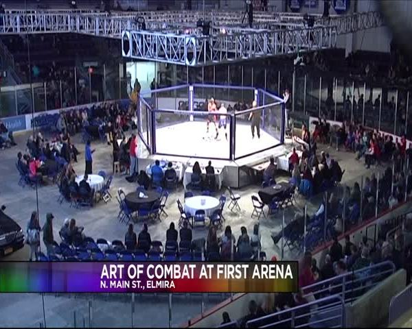 Art Of Combat Comes To First Arena_20160117053507