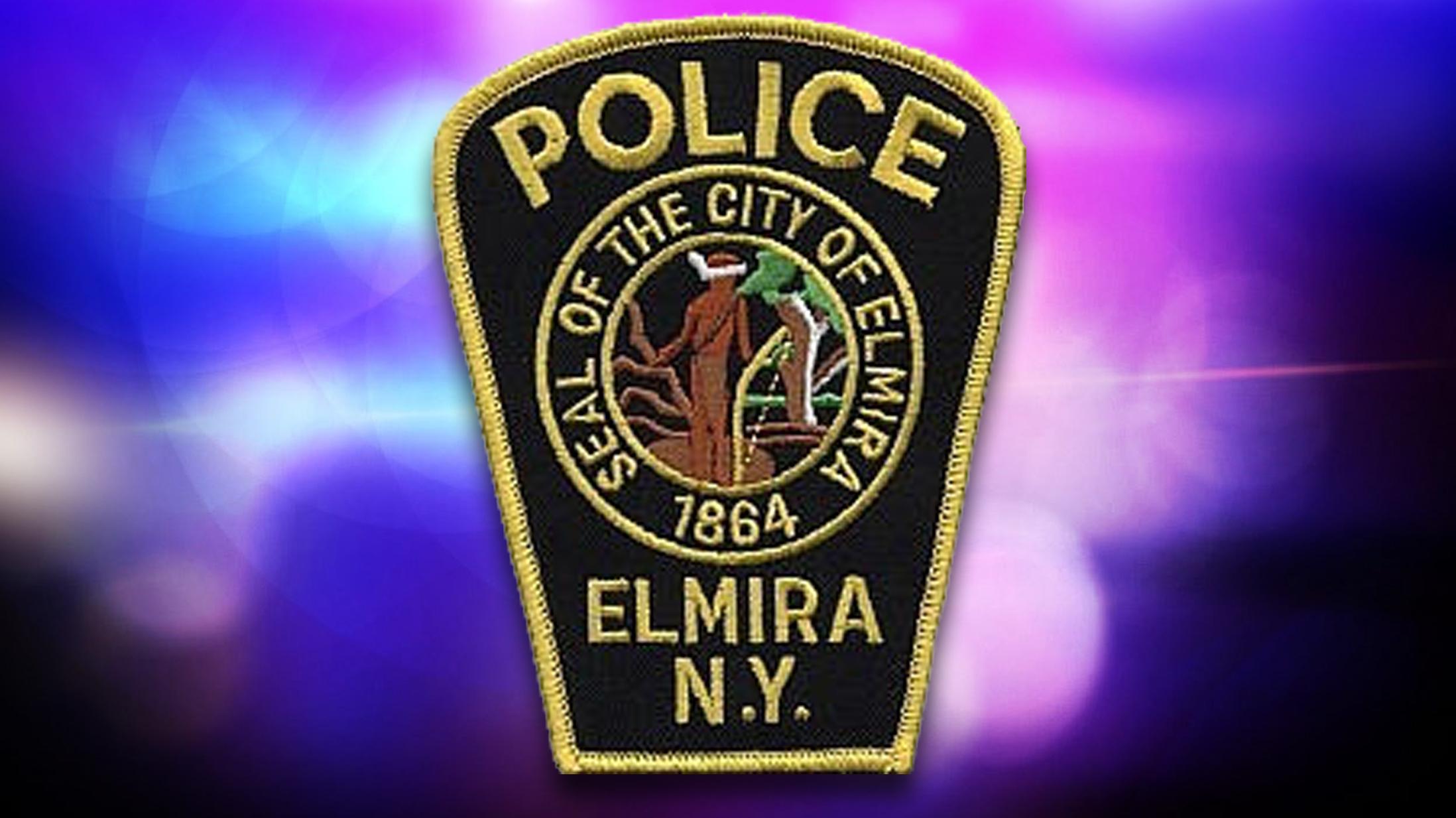 Elmira PD 12 18 2015_1452296341670.jpg