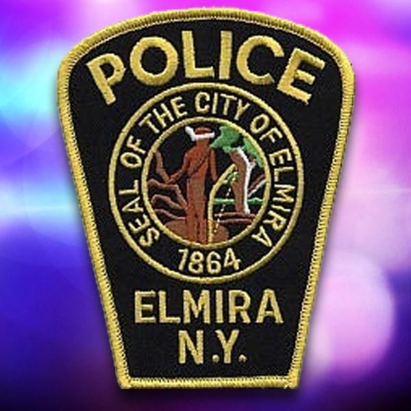 Elmira PD 12 18 2015_1452982153331.jpg