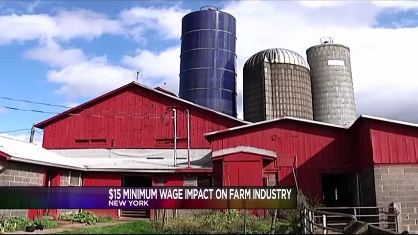 Farmers Have Concerns Over Proposed -15 Minimum Wage_89793012-159532