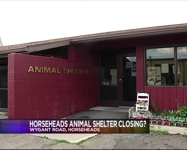 Horseheads Animal Shelter_34568869-159532