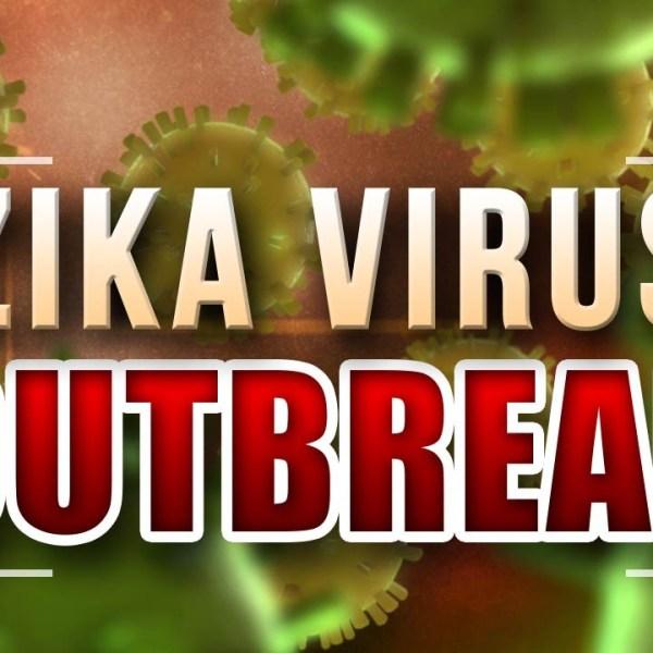 Zika Virus_1454331106494.jpg