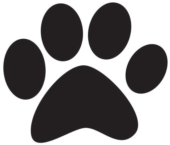 DOG PAW_1457652826006.jpg