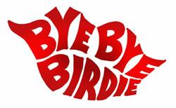 bye_bye_birdie_250_1458128802638.jpg