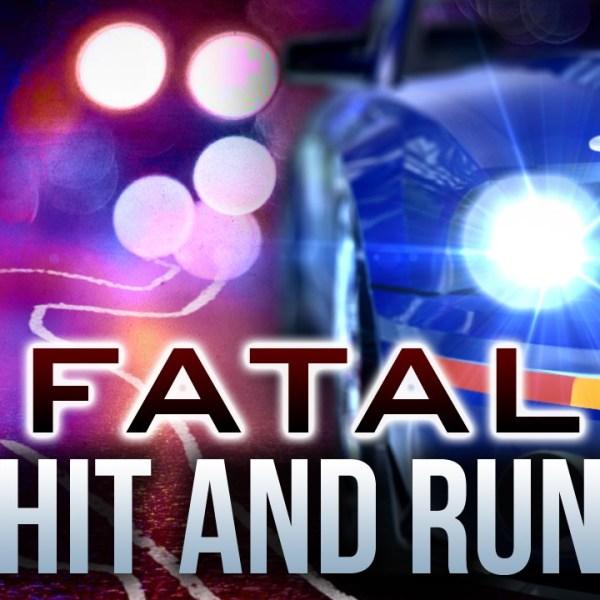 Fatal Hit and Run_1460535164867.jpg