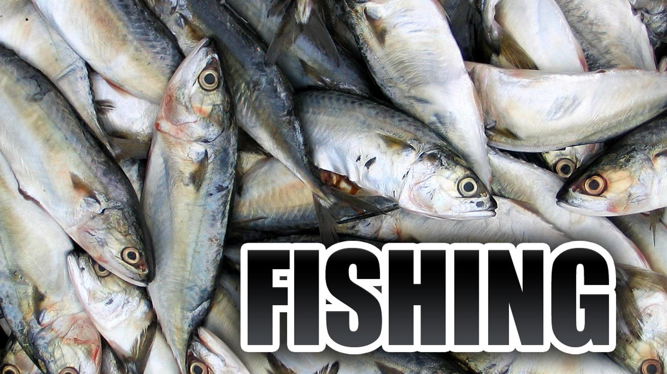 Fishing Generic FOR WEB_1460154020782.jpg