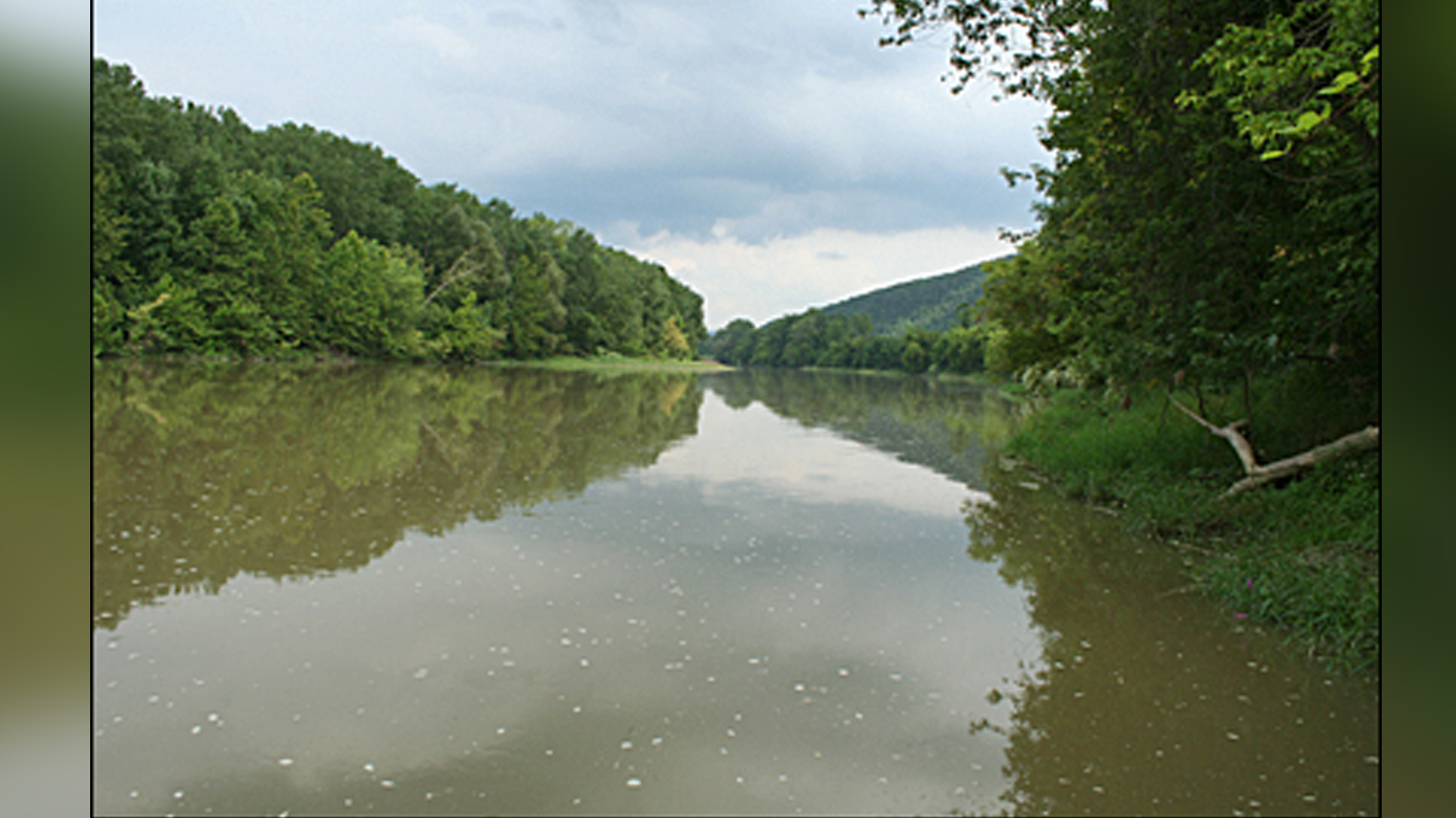 Chemung River pic FOR WEB_1464147864624.jpg