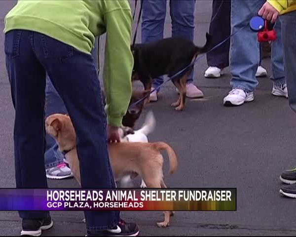 Fundraiser Held Saturday to Benefit Horseheads Animal Shelte_01096167-159532