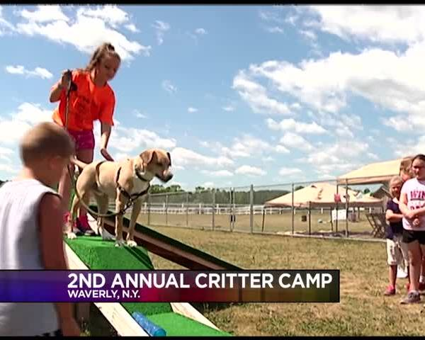 -Critter Camp- Teaching Kids About Animal Safety_25738916-159532