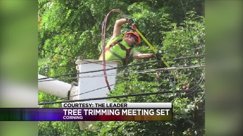 Tree Trimming Informational Meeting in Corning_20160730035103