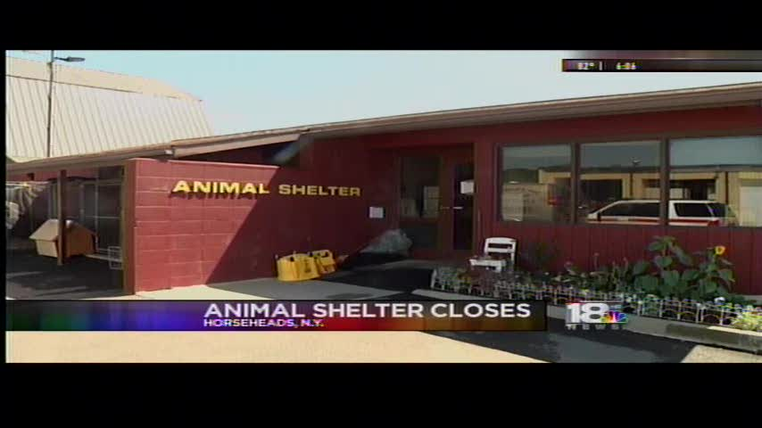 Horseheads Animal Shelter Closes_31352850-159532