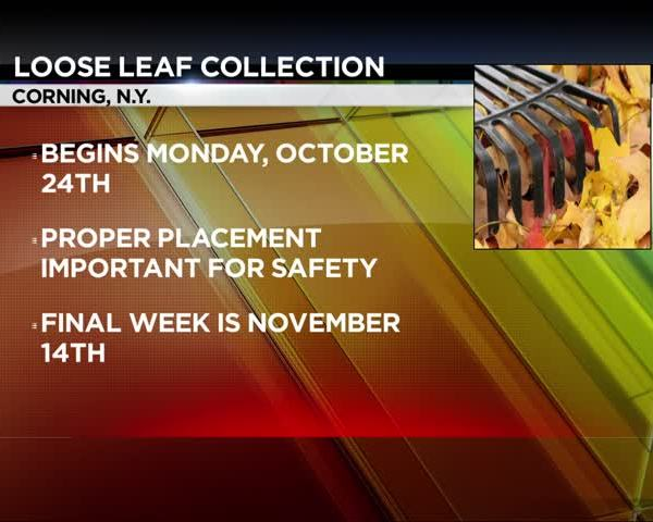 Loose Leaf Collection_53384438-159532