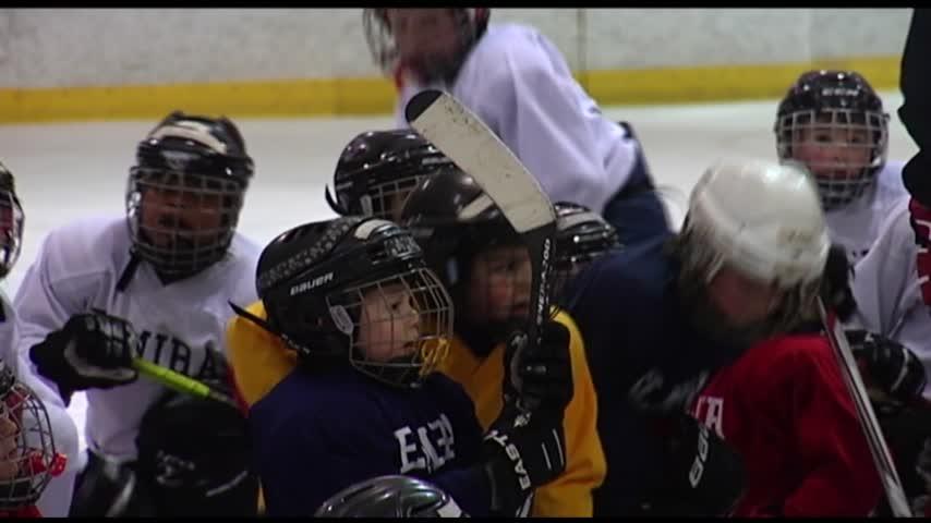 Elmira Youth Hockey Skating on Thin Ice_35716666