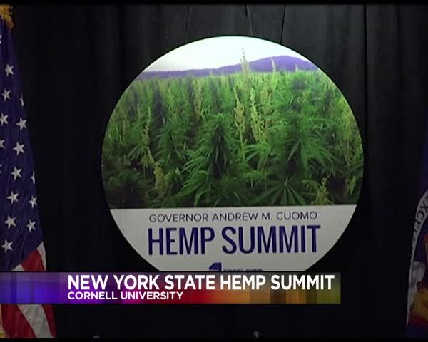 NY Hemp Summit Discusses Farming Benefits and Challenges_01662158