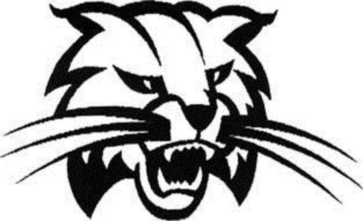 Athens Wildcats logo_1495400082701.jpg