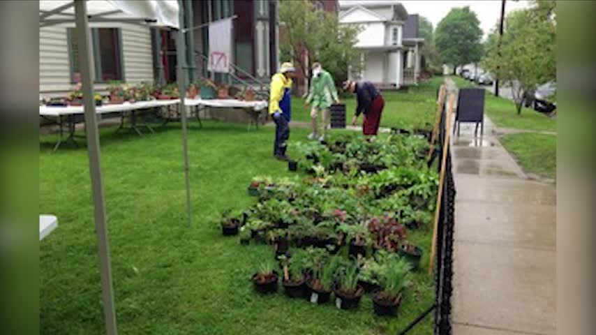 Corning Garden Club Annual Plant Sale- Forum- Book Signing_98624308