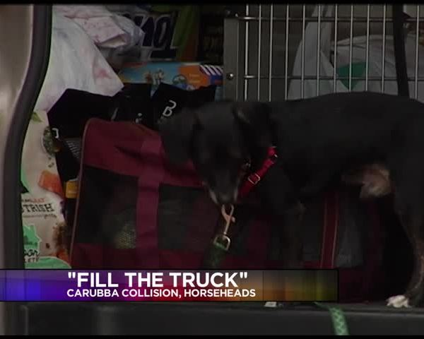 Community members donated pet supplies for -Fill the Truck-_95532454