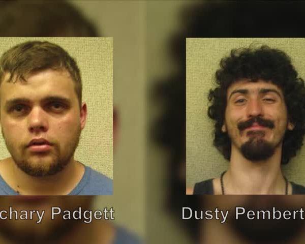 Elmira criminal mischief charges_30605854
