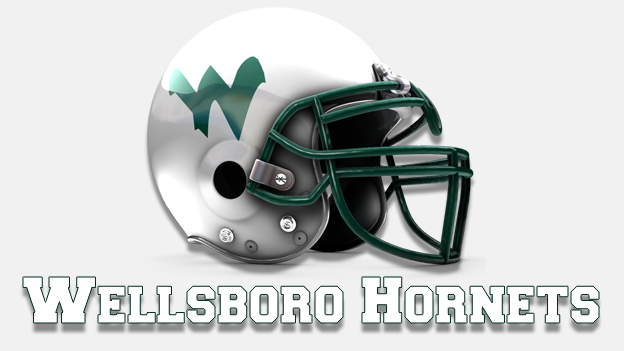 Wellsboro Hornets DMB_1503587981189.png