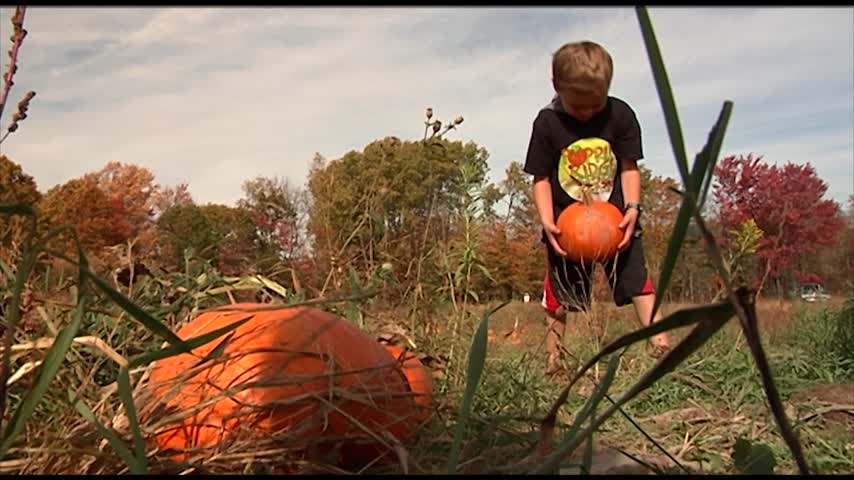 Local family keeps Autumn tradition alive to honor father_55353573