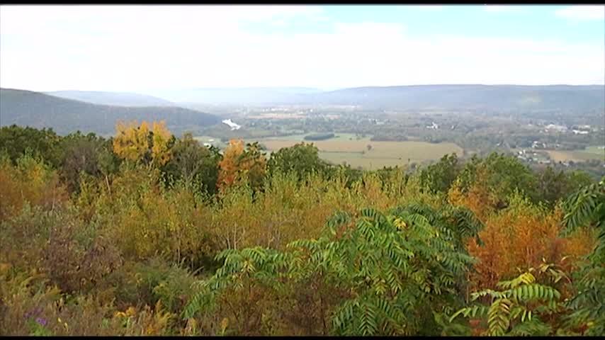 Fall Foliage Outlook