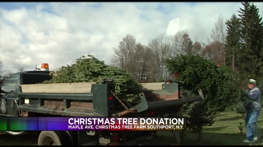 Christmas Tree Farm Donates Trees to the Town of Southport