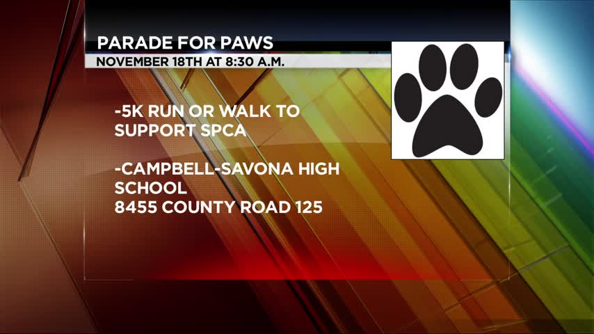 -Parade for Paws- 5K run to benefit SPCA_44175390