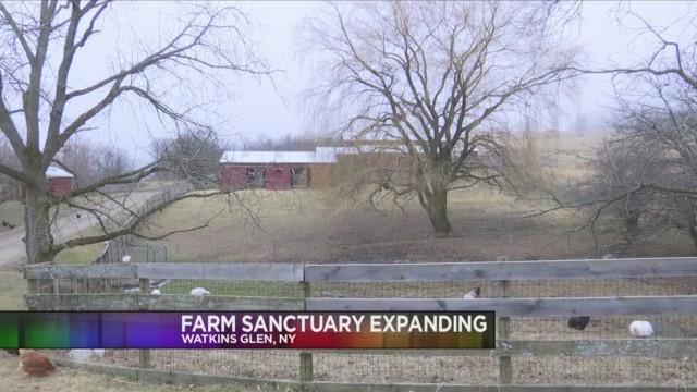 Farm_Sanctuary_Expanding_0_20180301233546