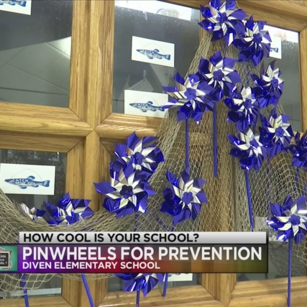 Pinwheels_for_Prevention__How_Cool_Is_Yo_0_20180413112325