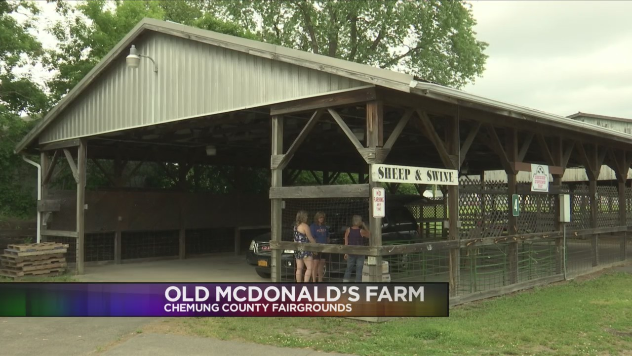 Old McDonald's Farm