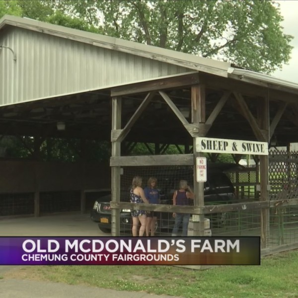 Old McDonald's Farm