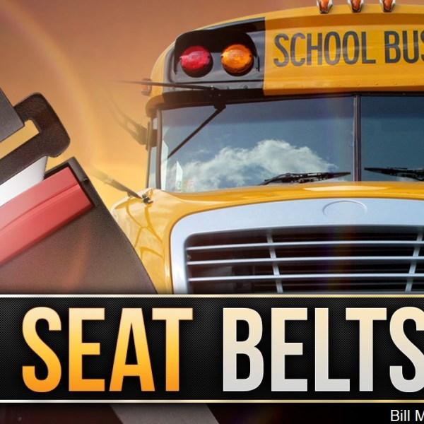 SCHOOL BUS SAFETY BELTS_1527088436697.jpg.jpg