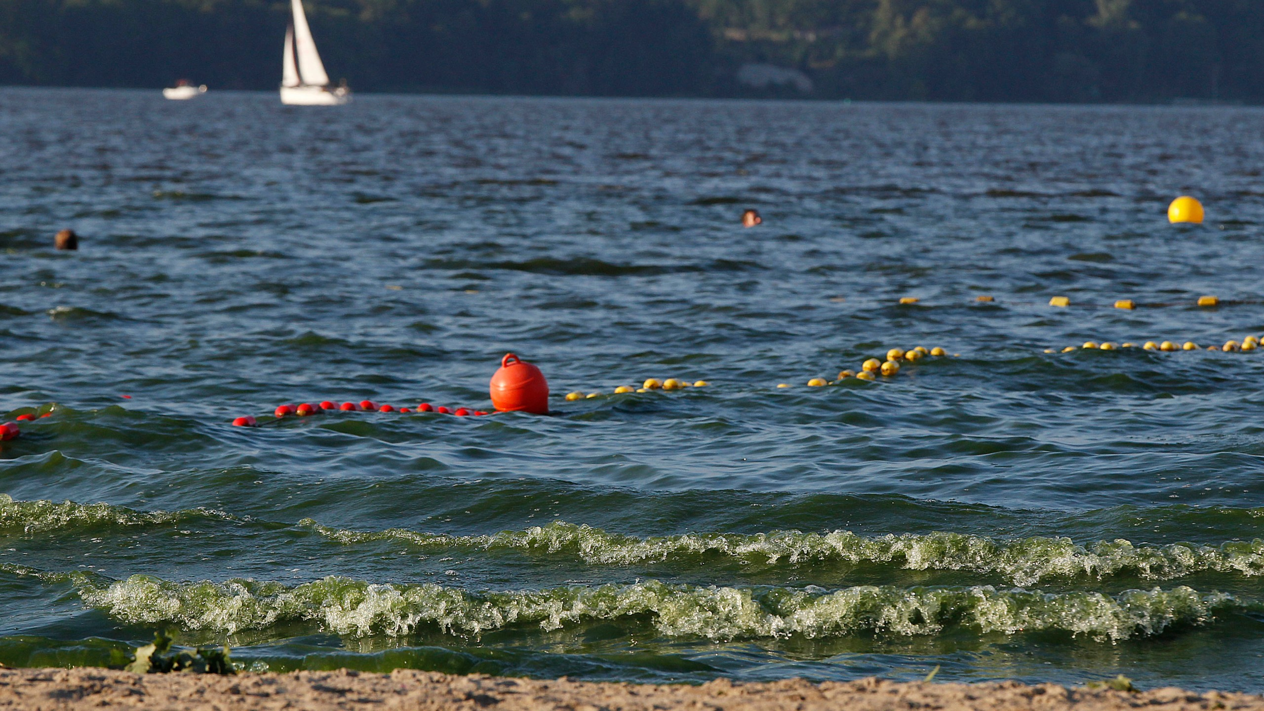 Poland_Algae_Blooms_49594-159532.jpg53149570