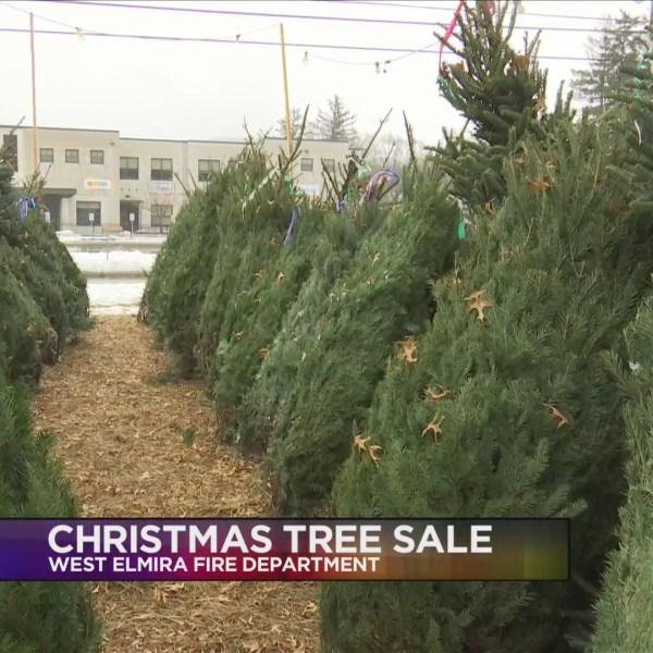 Christmas_Trees_0_20181124232358