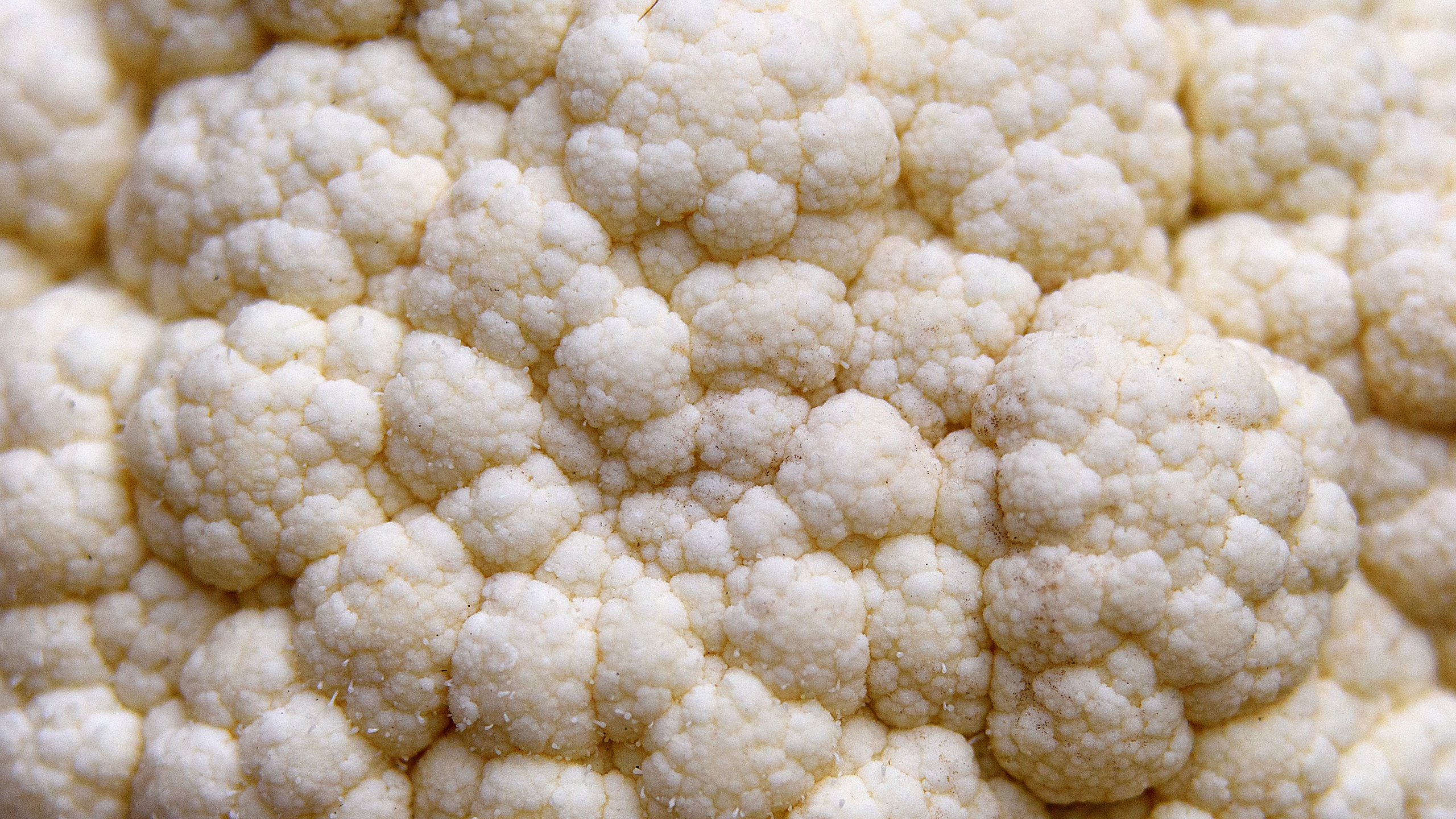 cauliflower-118809282