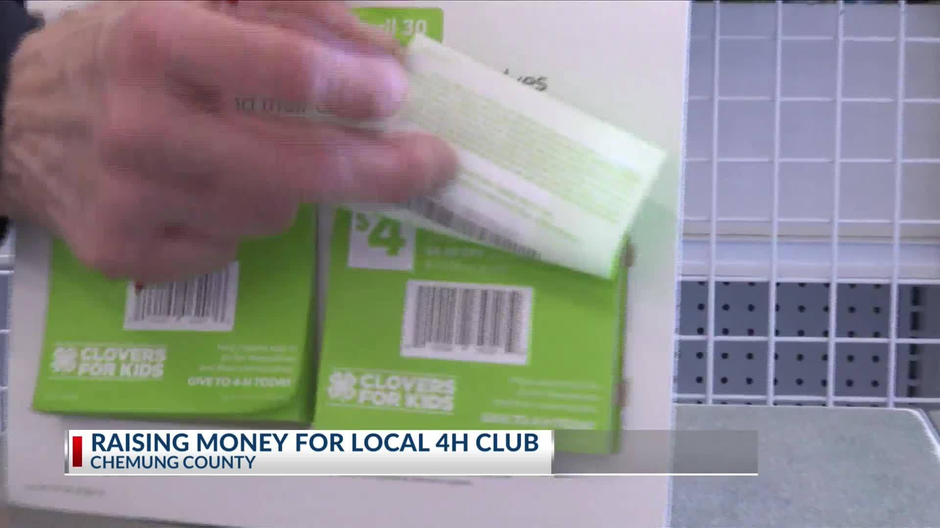 Chemung_County_4H_club_raising_money_for_4_20190315224420