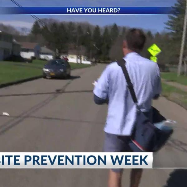 Dog_Bite_Prevention_Week_7_20190416211724