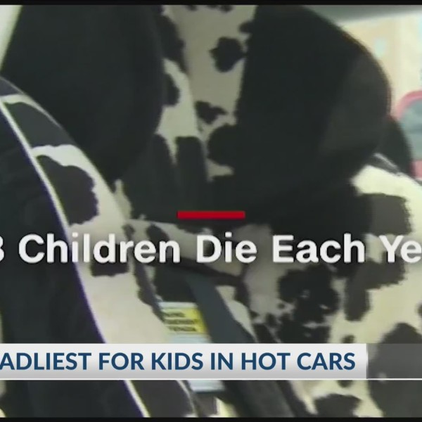 2018 Deadliest for Kids in Hot Cars