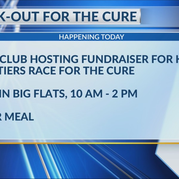 Cook-out for the cure: local store hosting fundraiser for Komen Twin Tiers