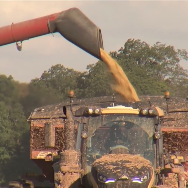 Farms and Tariffs
