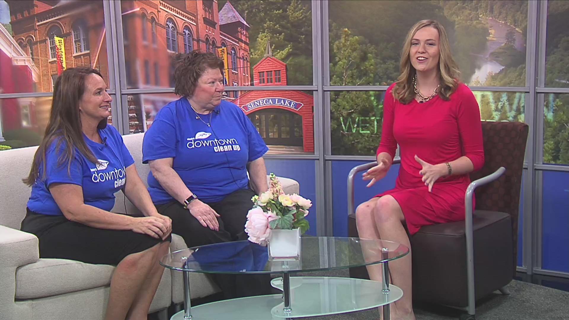 Volunteers needed for Elmira Downtown Clean-up