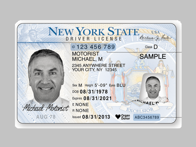 ny-drivers-license_1558466411552.png