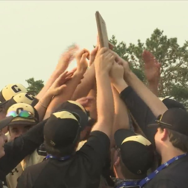 Hawks win sectional title in extra innings