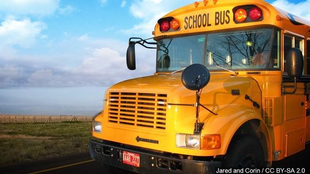 bus_1559847911904.jpg