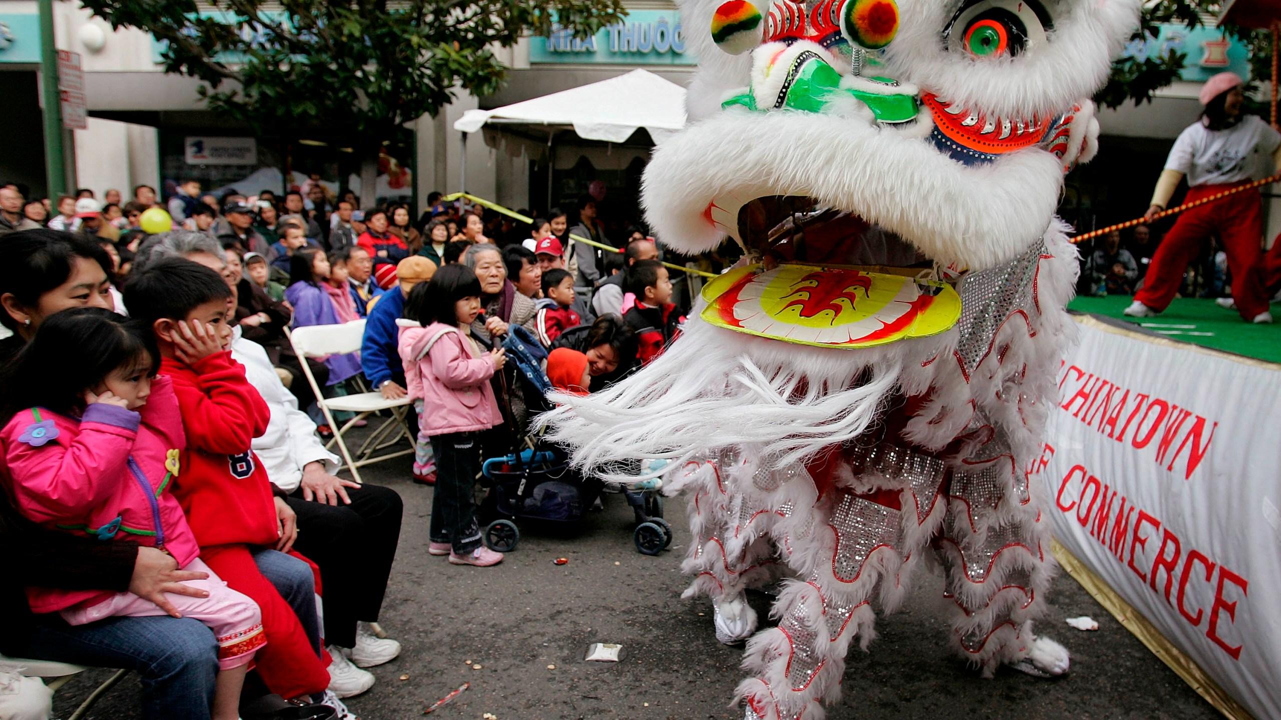 Chinatown New Year Lion Dance Dog